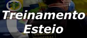 Read more about the article Capacitamos a Guarda Municipal e Fiscalização de transito de Esteio
